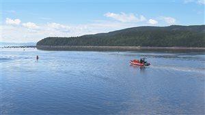 Un bateau pneumatique pour les croisières aux baleines.