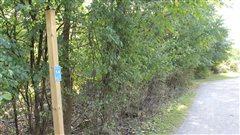 Sécurité au parc du Mont-Saint-Bruno: Longueuil croit avoir trouvé la solution