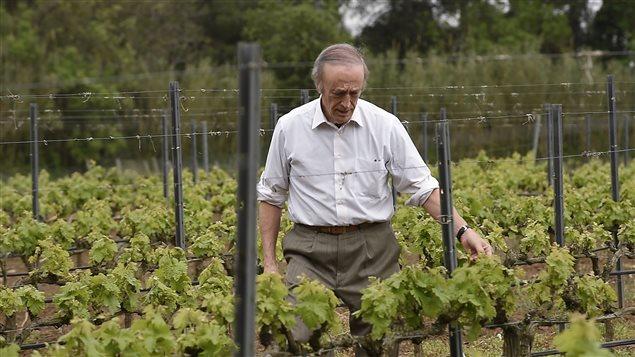 Miguel Torres, vigneron en Catalogne, Espagne