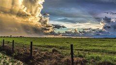 Les agriculteurs des Prairies,seuls «véritables gagnants» du réchauffement climatique?