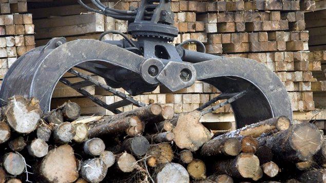 La guerre du bois entre le Canada et les Etats-Unis