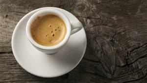 Le café en vedette à Montréal