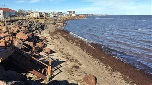 Des résidents de Cap-des-Caissie ont fait installer des rochers pour contrer l'érosion