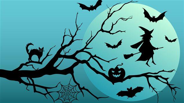 Découvrez la provenance scientifique d'Halloween