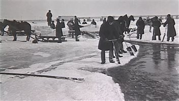 Le commerce de la glace, du fleuve à la glacière