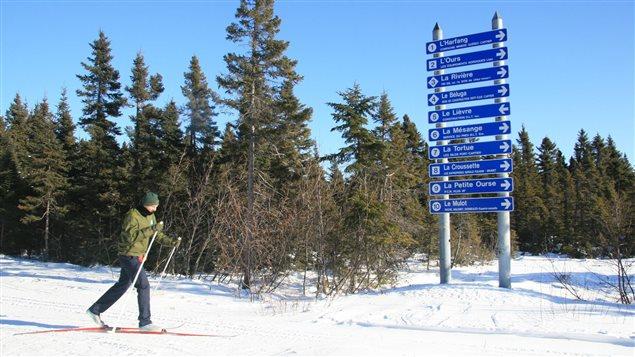 Skieur dans les pistes de la Base de plein air Les Goélands de Port-Cartier