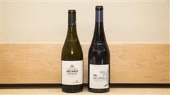 Élyse Lambert recommande des vins de Sicile et de Corse