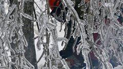 Des Québécois versent 10 000$ aux sinistrés de la crise du verglas
