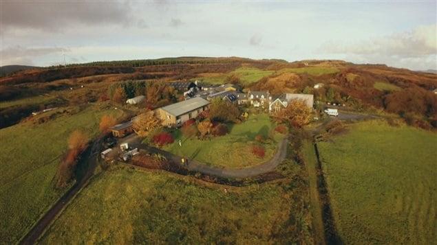 Cette ferme d'Écosse nourrit ses bâtes avec les résidus d'orge de la distillerie locale.