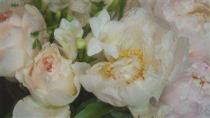 La pivoine est une fleur convoitée.