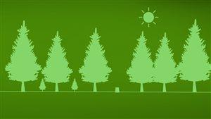 Reboisement des forêts au Québec.