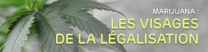 Marijuana : les visages de la légalisation