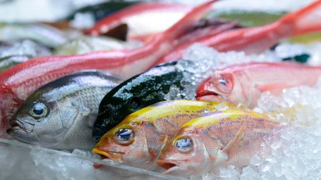 Consommer du poisson durable, une course à obstacles