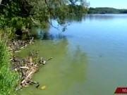 lac-algues-vertes