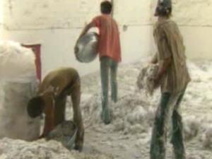 Des images tournées en Inde par la CBC en août dernier révèlent à quel point les mesures de santé et de sécurité pour les travailleurs indiens qui manipulent l'amiante exportée du Québec sont pratiquement inexistantes.