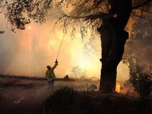 Le mont Carmel en flammes