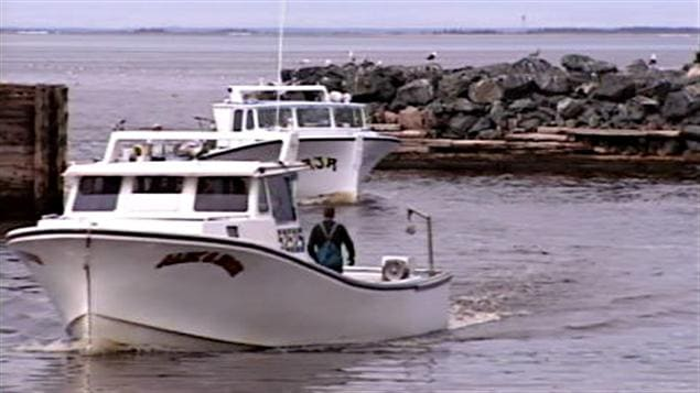 bateau de peche nb