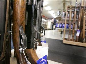 Crosses de fusils de chasse dans une armurerie.