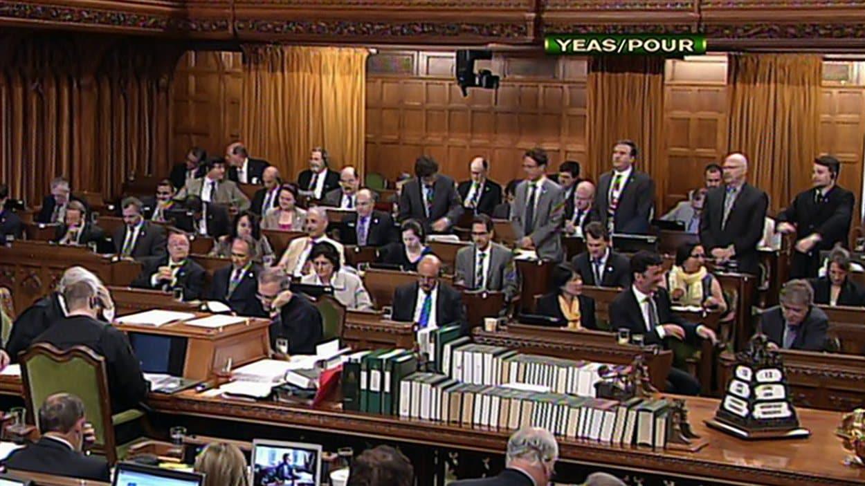 Les députés votent à Ottawa.