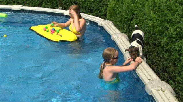 l 39 application de la r glementation des piscines r sidentielles est peu surveill e en outaouais. Black Bedroom Furniture Sets. Home Design Ideas