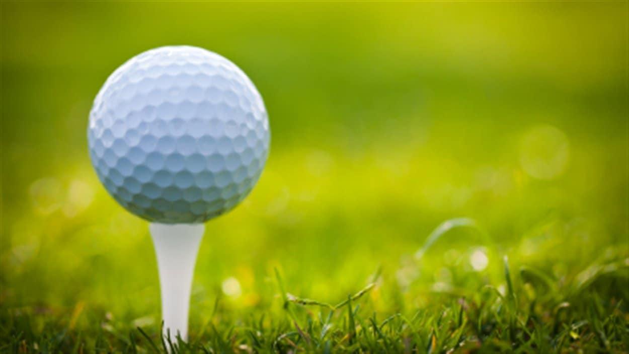 Les 60 meilleurs joueurs de golf professionnels du qu bec for Golf du bic forfait