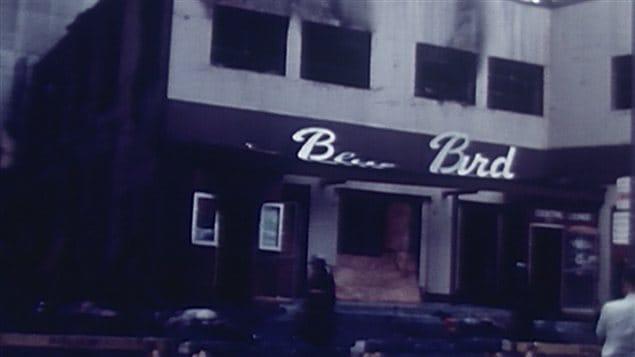 Les ruines du Bluebird
