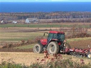 Terres agricoles du Bas-Saint-Laurent