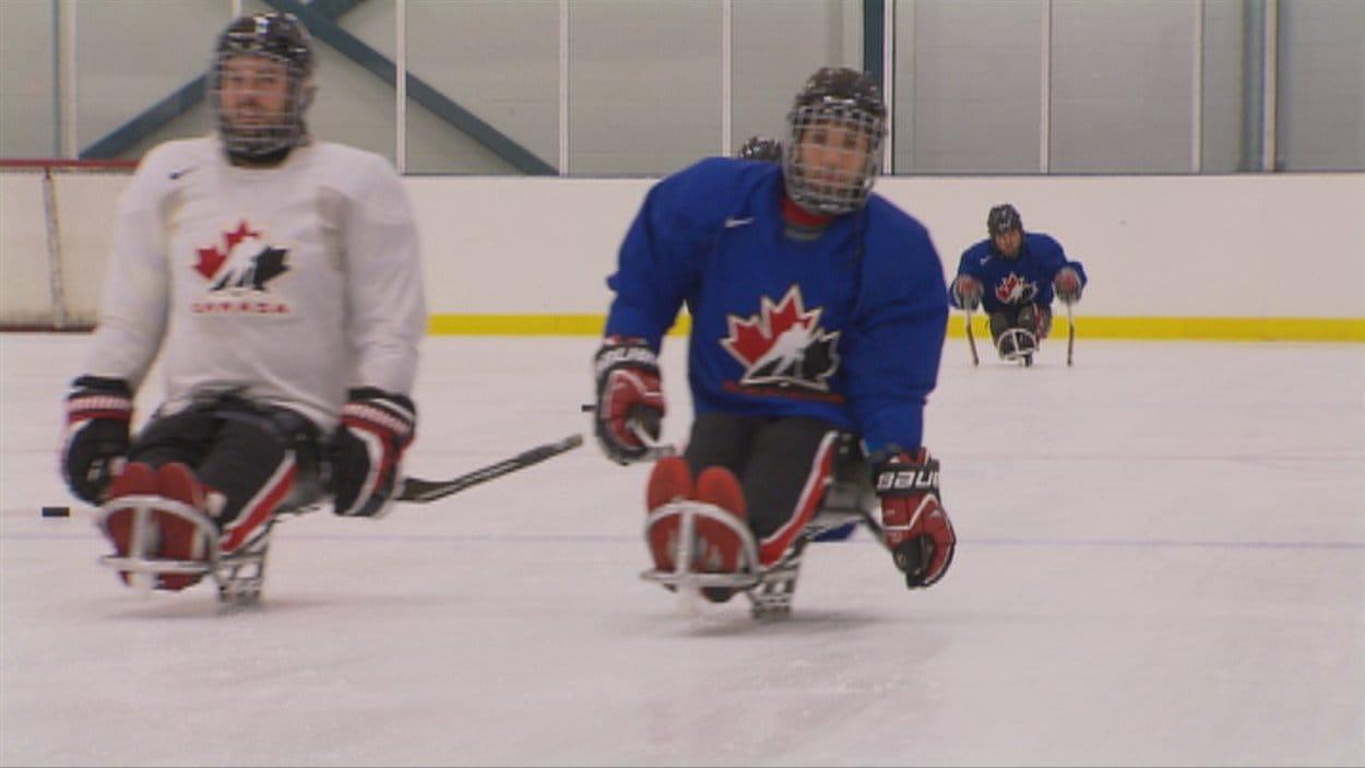 L'équipe nationale de hockey sur luge à l'entraînement.