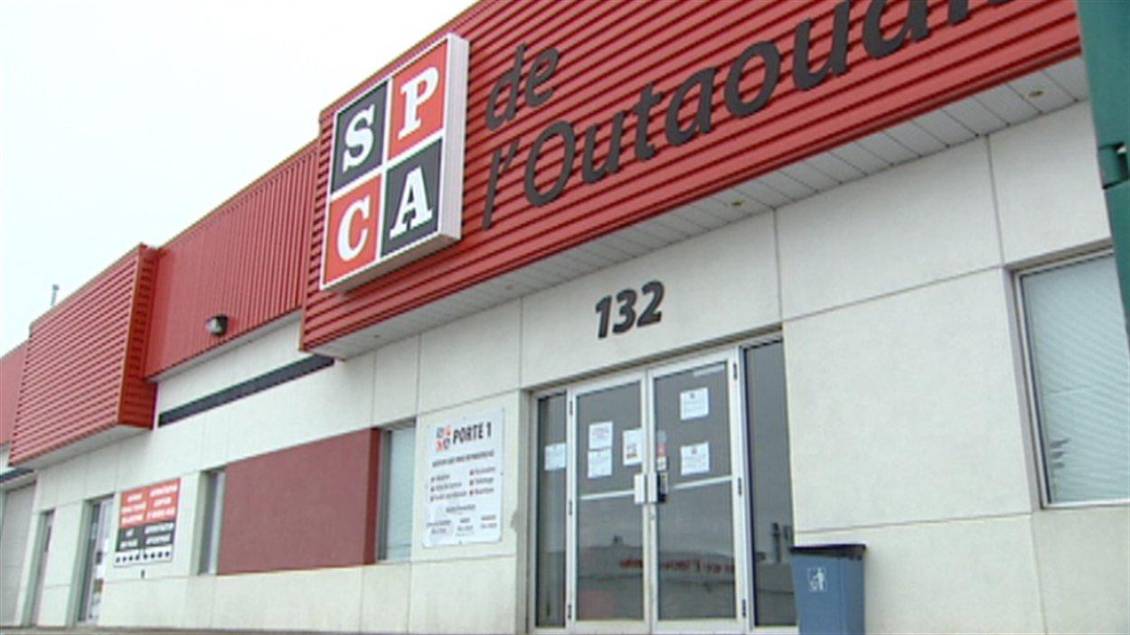 Les bureaux de la SPCA de l'Outaouais sont situés sur la rue de Varennes à Gatineau.