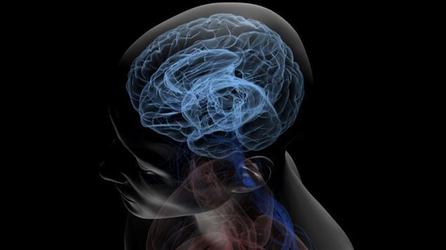 Dyslexie : Le Cerveau Mal Connecté?
