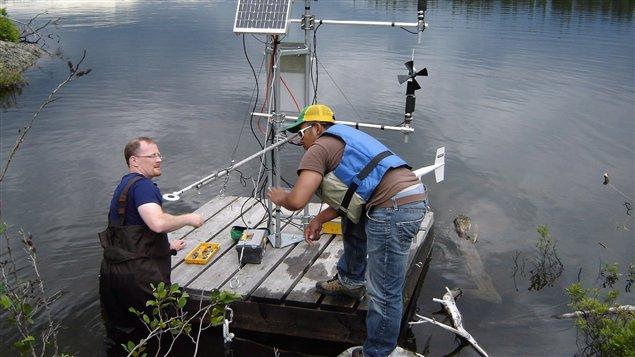 Des chercheurs de la Région des lacs expérimentaux