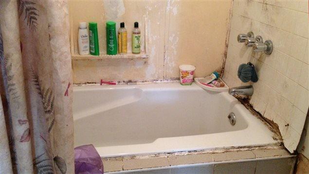De Meilleurs Logements Amélioreraient La Santé Des Citoyens De L - Moisissures salle de bain