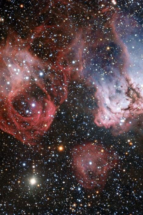Cette image se focalise sur la région NGC 2035 baptisée Nébuleuse de la Tête de Dragon.