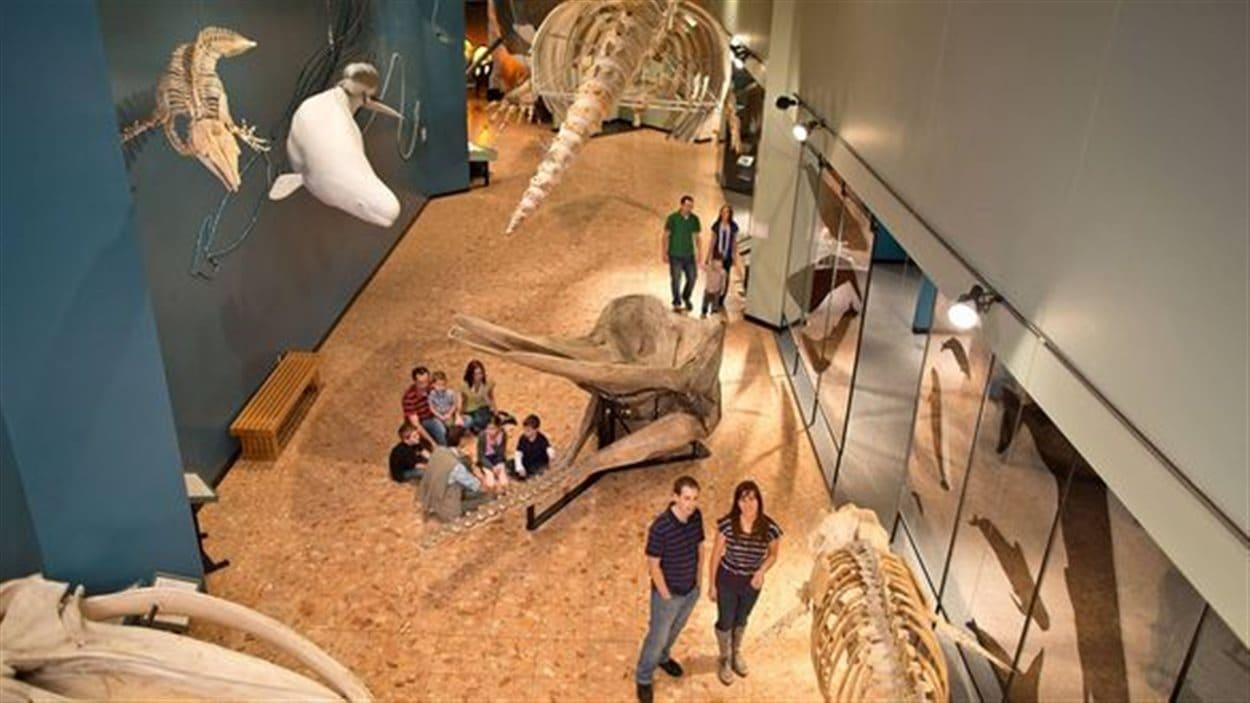 Le musée du Nouveau-Brunswick, à Saint-Jean