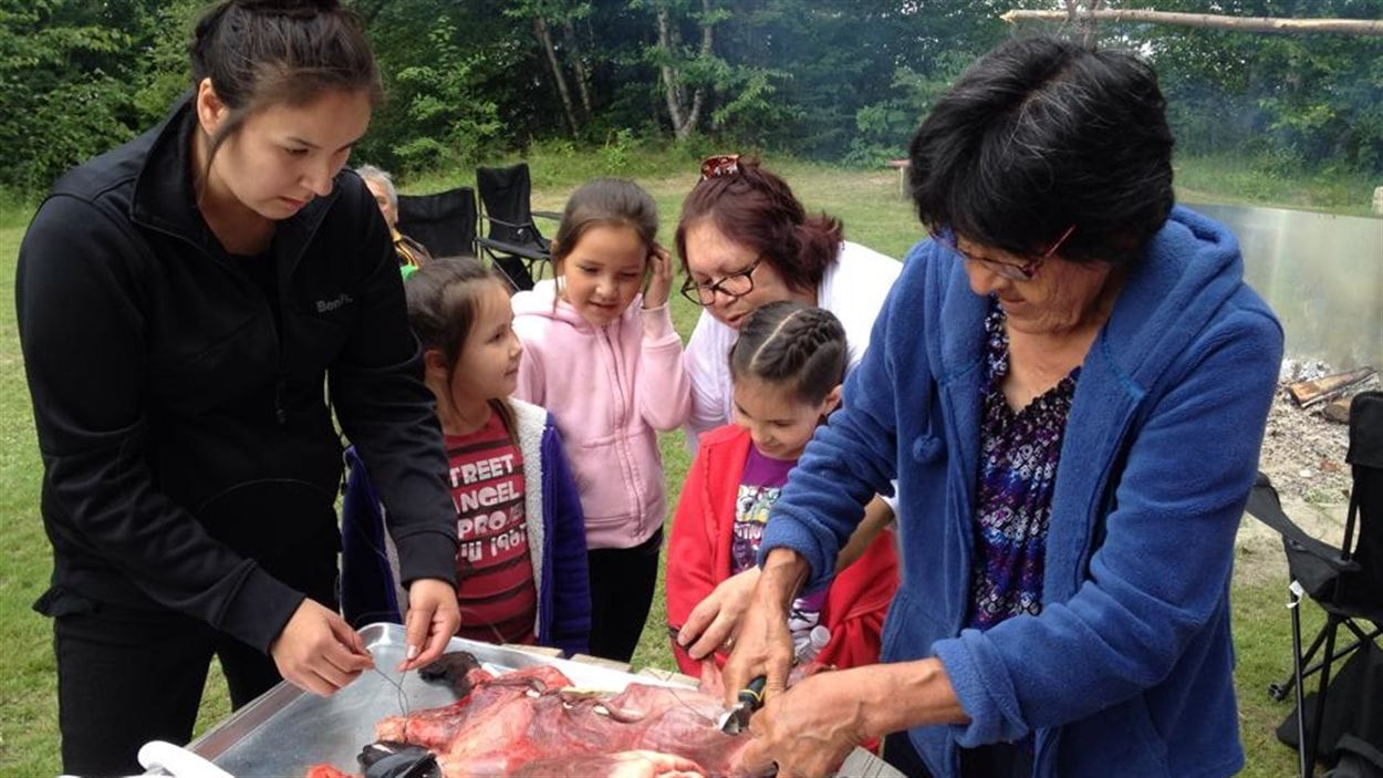 Des aînées montrent aux plus jeunes comment apprêter les outardes, le castor et le cœur d'orignal à la Journée traditionnelle du Centre d'amitié autochtone de Val-d'Or