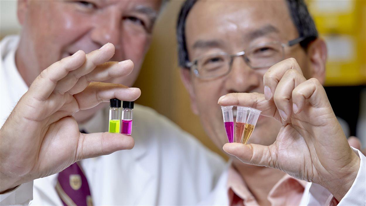 Les chercheurs Yingfu Li et Bruno Salema, de l'Université McMaster