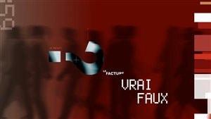 La facture - Vrai/Faux - Émission du 11 novembre 2014