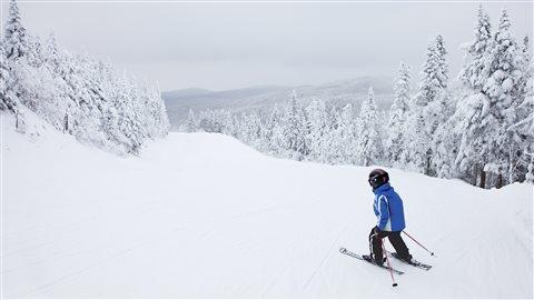 Un jeune skieur sur les pentes.