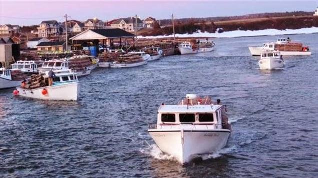 L'industrie du homard est en pleine expansion à l'Î.-P.-É., selon l'Association des pêcheurs de l'Île