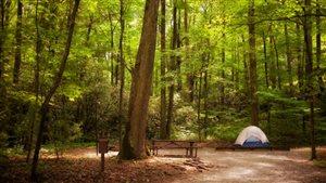 Les tentes ont beaucoup évolué depuis 400 ans