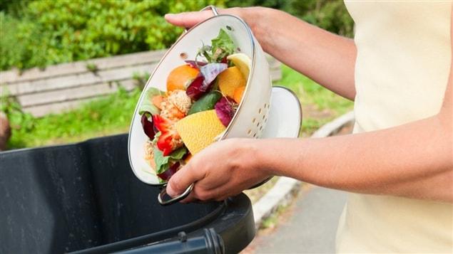Le gaspillage de nourriture pr occupe les qu b cois ici for Lien dans une nouvelle fenetre