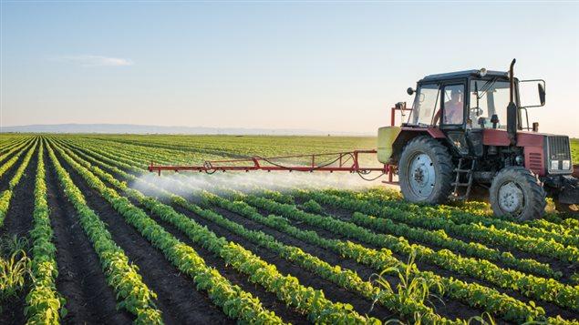 Qu bec a perdu le contr le des pesticides ici radio for Lien dans une nouvelle fenetre