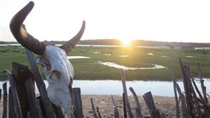 La vie secrète du lac Lançois