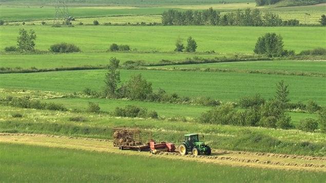 L'agriculture pourrait tirer des bénéfices mais aussi des désavantages de changements climatiques.