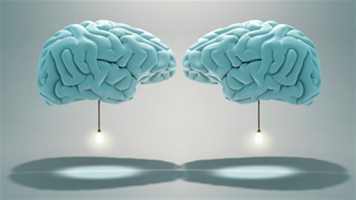 Une étude rapporte que le cerveau possède un mélange de caractéristiques masculines et féminines.