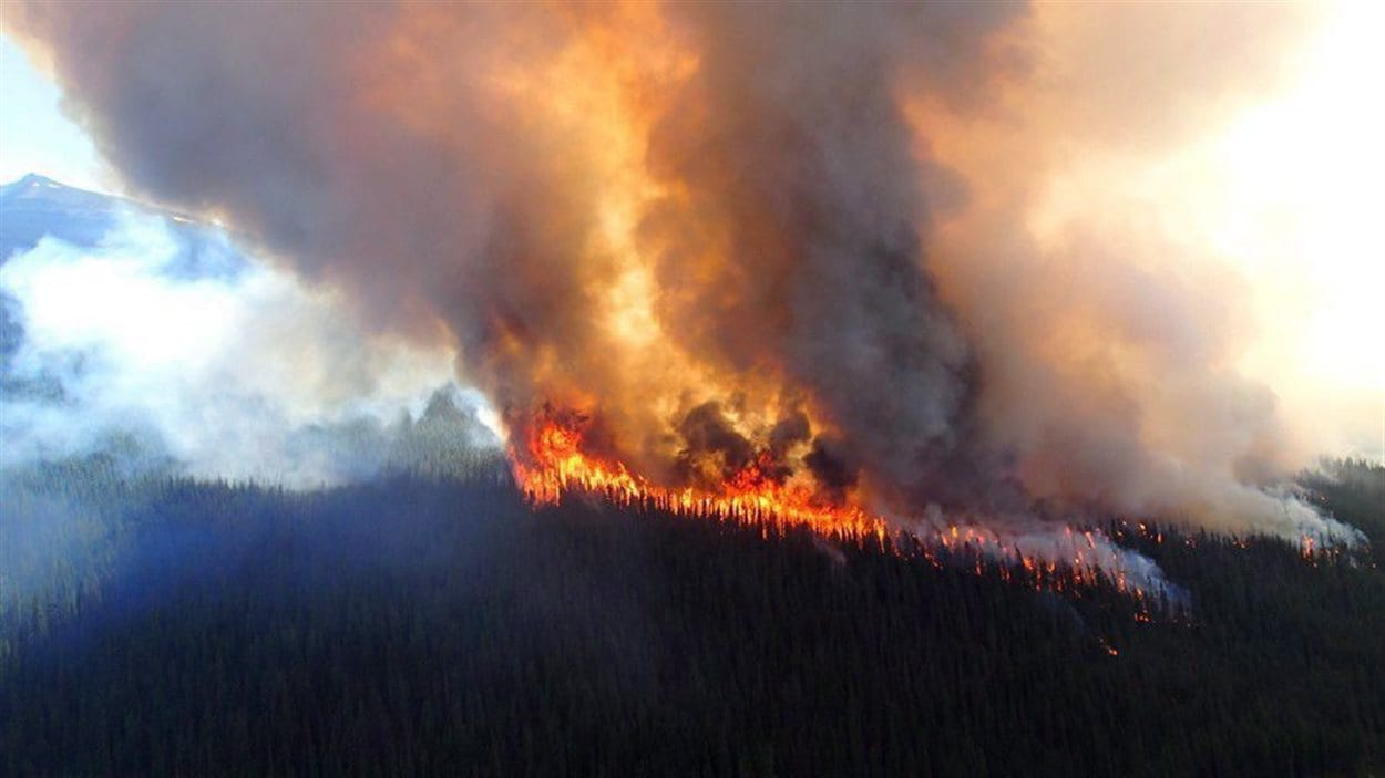 Feu de forêt dans le parc national de Jasper, en Alberta, en juillet 2015.