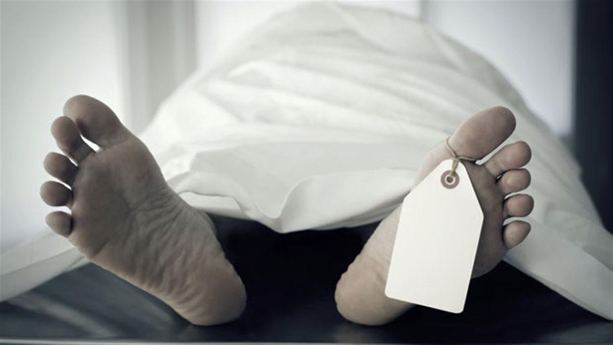 L'Institute of Motion attire des participants de partout en Amérique du Nord pour des ateliers sur l'autopsie.