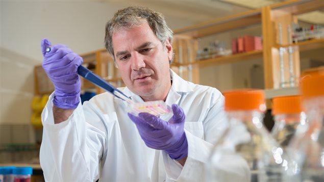 Gary Kobinger dans son laboratoire