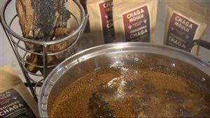 La poudre de chaga doit être mijotée pendant quelques heures.