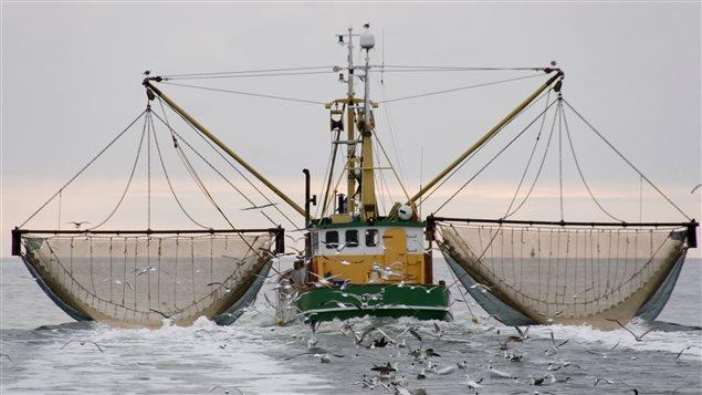 bateau de peche a la morue